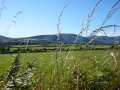 view to Comeraghs